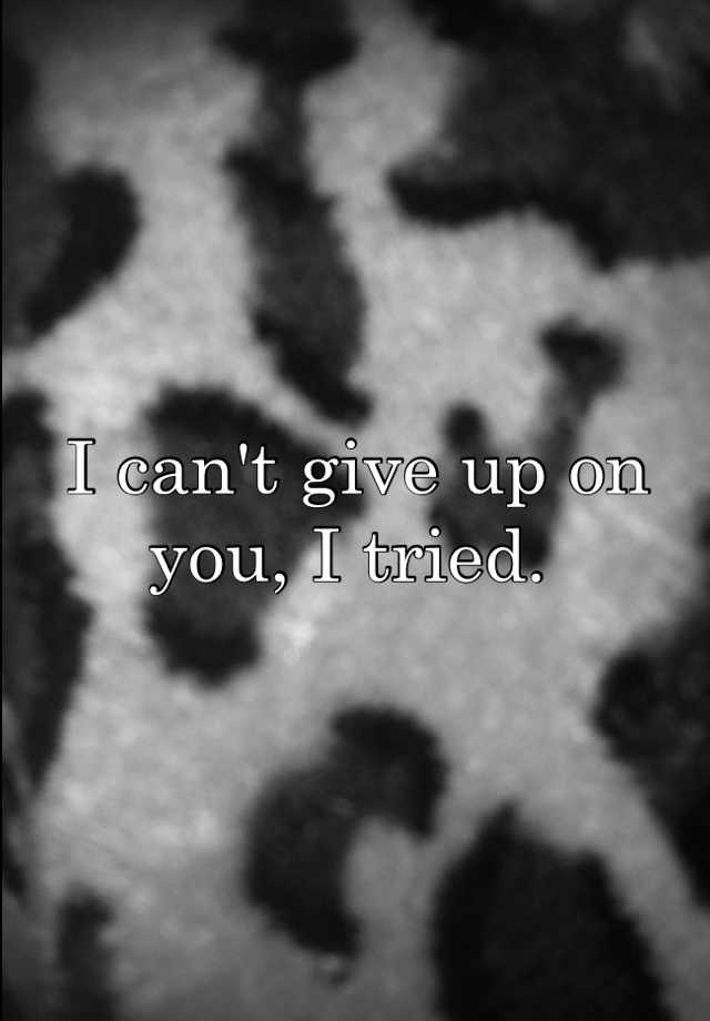 I can't give up on you, I tried.