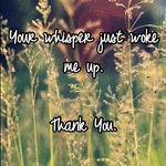 Your whisper just woke me up.   Thank You.