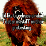I'd like to release a rabid Tibetan mastiff on their protesting...