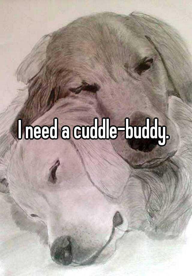 I need a cuddle-buddy.