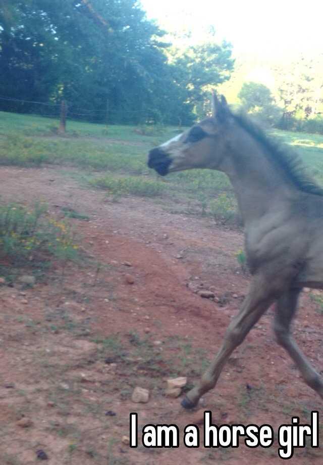I am a horse girl