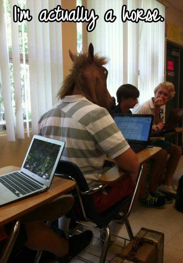 I'm actually a horse.