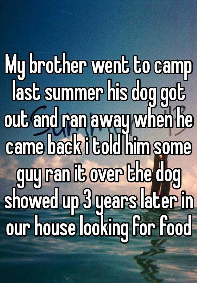 My brother went to camp last summer his dog got out and ran away when he came back i told him some guy ran it over the dog showed up 3 years later in our house looking for food