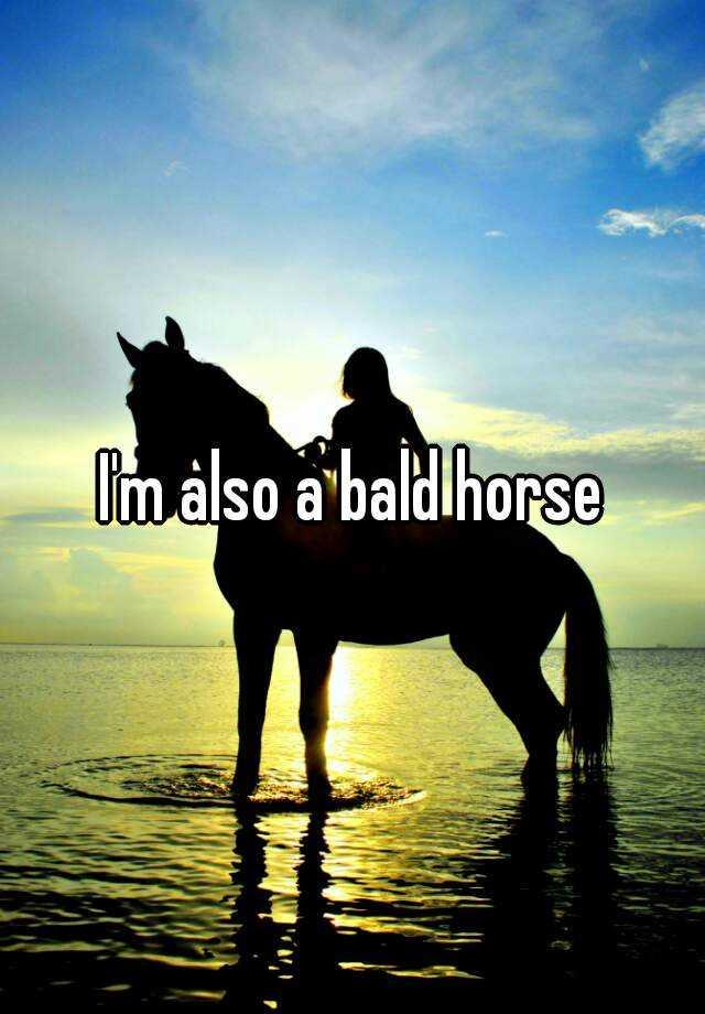 I'm also a bald horse
