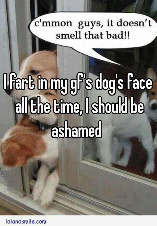 I fart in my gf's dog's face all the time, I should be ashamed