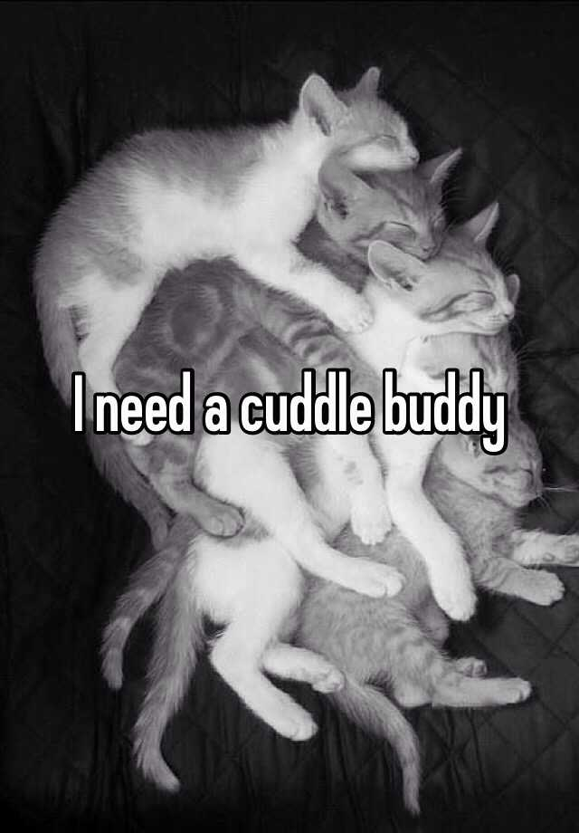 I need a cuddle buddy