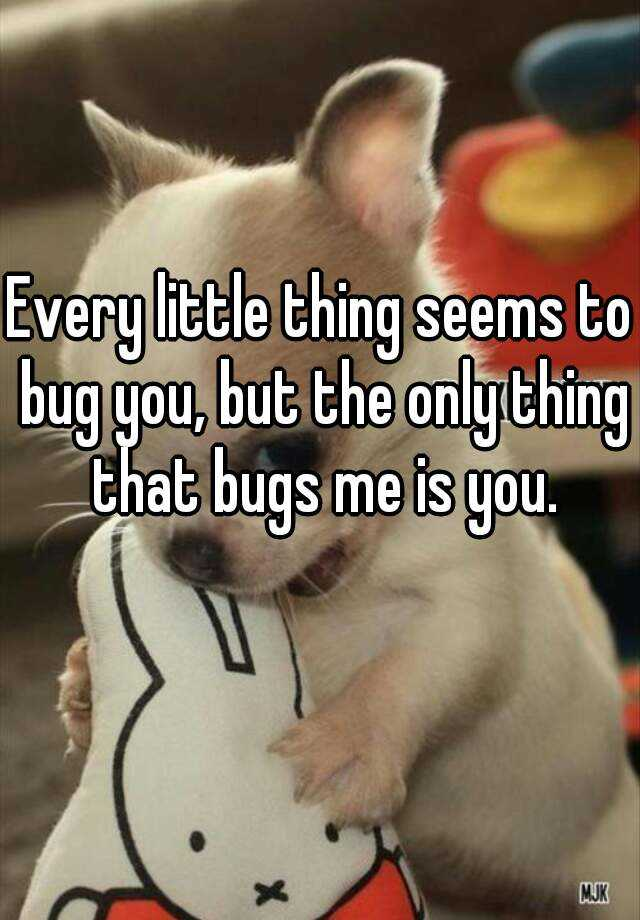 Every little thing seems to bug you, but the only thing that bugs me is you.