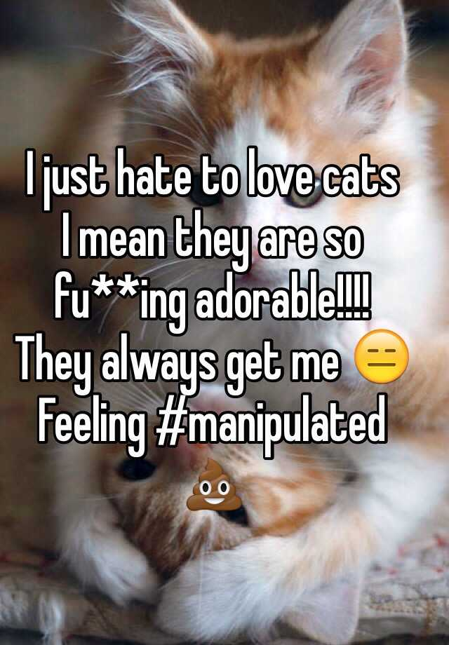 I just hate to love cats  I mean they are so fu**ing adorable!!!!  They always get me 😑 Feeling #manipulated  💩