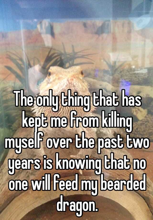 The only thing that has kept me from killing myself over the past two years is knowing that no one will feed my bearded dragon.